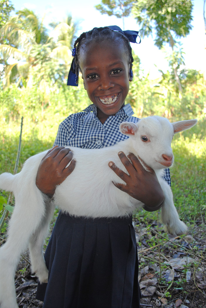 A girl receives a baby goat at her school in rural Haiti.