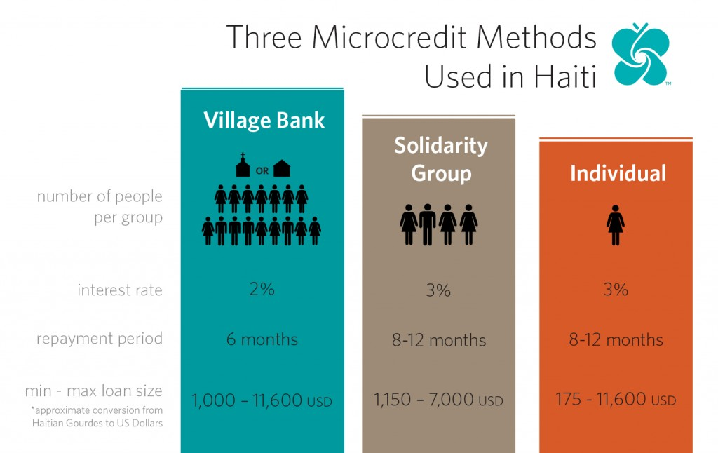 Microcredit Models Infographic2