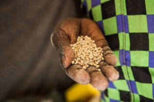 Displaced before they could plant crops, many in South Sudan face imminent threats of famine and starvation.