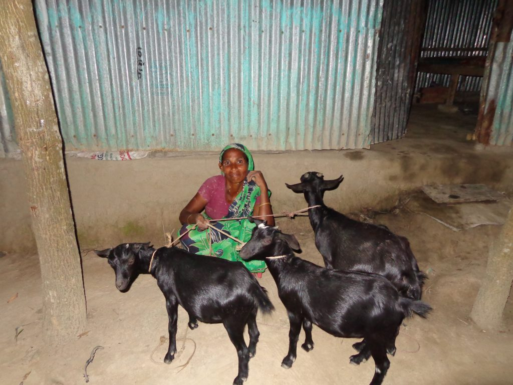 the gift of a goat to a woman like Khuki enabled her to build a house for her and her three children.
