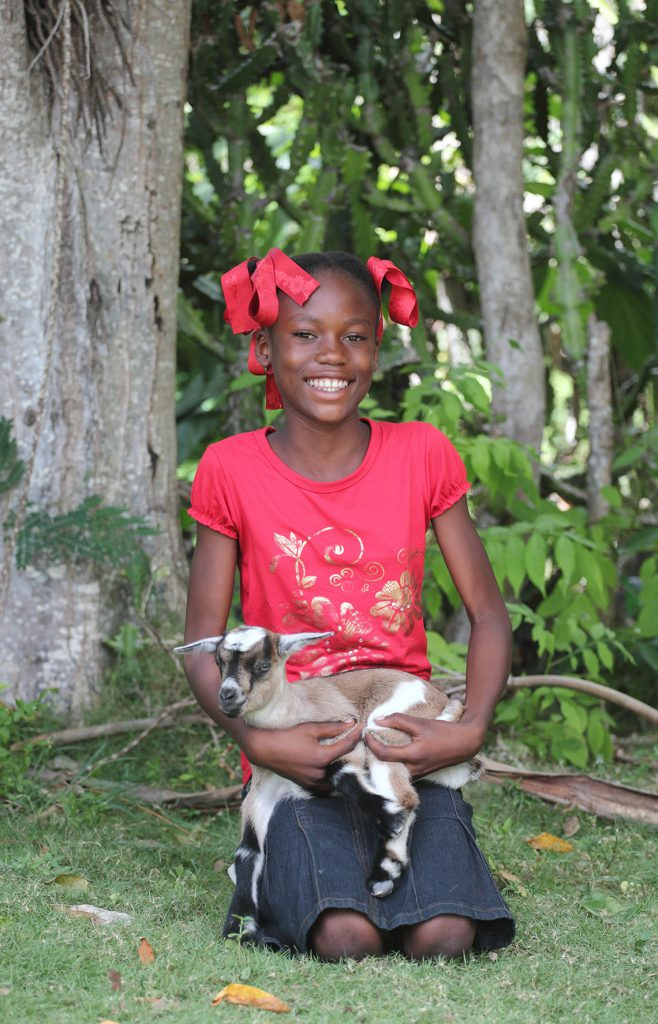 You can give the gift of a goat to a child in places like Haiti can earn a stable income and provide opportunities for kids to go to school and save for the future.