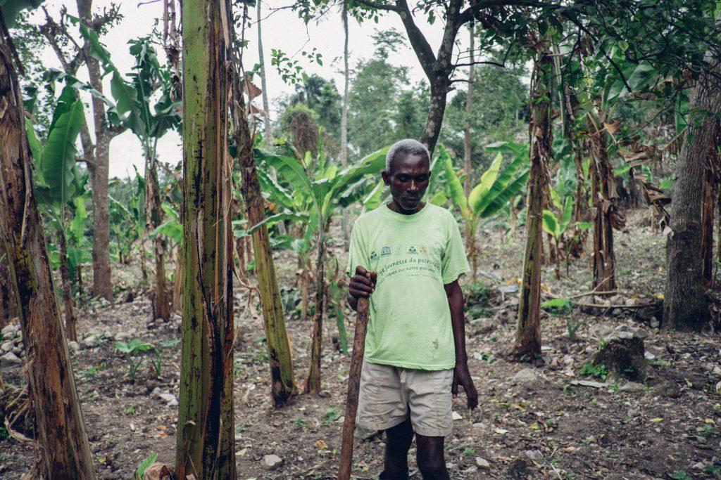 Farmer in Lestage