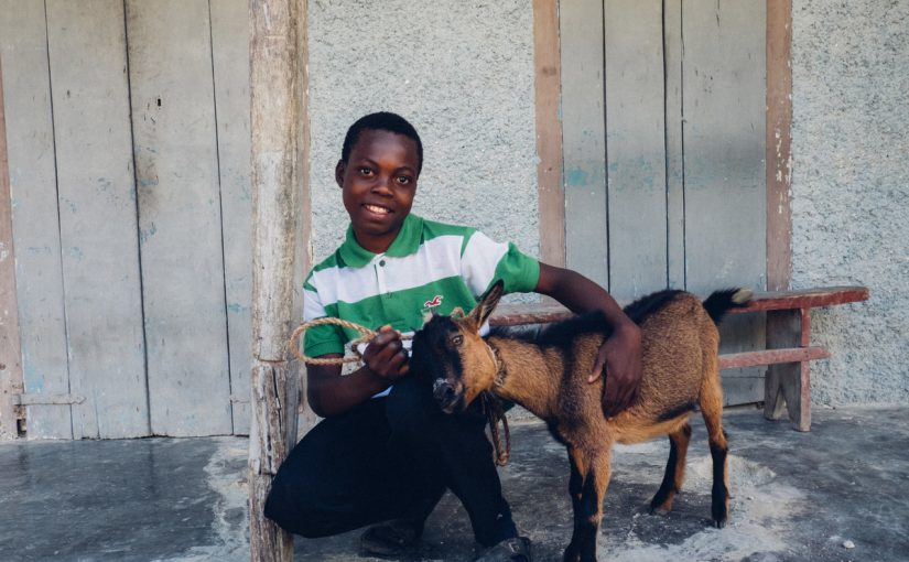 Why We're Thankful for Goats